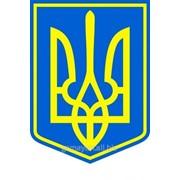 Герб Украины настенный, арт. 015-03213 фото