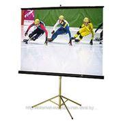 Экран на штативе Classic Libra 180x180 (T 180x180/1 MW-LS/B) фото