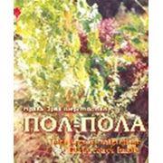Трава Эрва шерстистая (Пол-Пола) фото