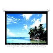 Экран настенный Classic Norma 305x229 фото