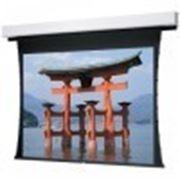 Встраиваемый проекционный экран Projecta Tensioned Advantage Deluxe Electrol (10130585) фото