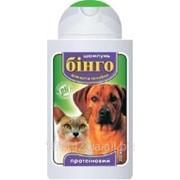 Шампунь для кошек и собак протеиновый 100 мл Бинго фото