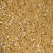 Крупа пшеничная озимая фото