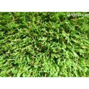 Трава декоративная искусственная Artgrass BTF-4-30D фото