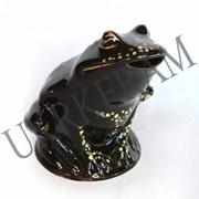 Копилка жаба №2453 фото