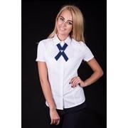 Женские блузки и рубашки фото
