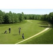 Поле для гольфа фото