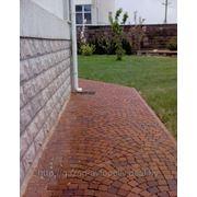 Укладка тротуарной плитки. борта.камня фото