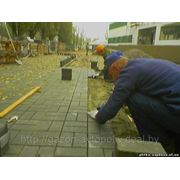 Плитка тротуарная с укладкой фото