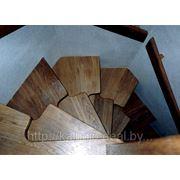 Лестница мотыльковая фото