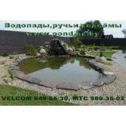 Устройство декоративных прудов,водопадов,купальных водоёмов... фото