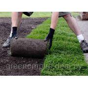 Рулонный газон (устройство) фото