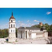Годовая деловая виза в Литву фото