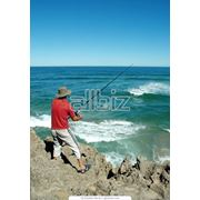 Туры на рыбалку и охоту фото