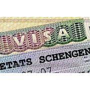Однократная виза в Польшу 13-15 дней фото