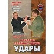 Русский рукопашный бой. Фильм шестнадцатый. Шоковые травмирующие удары фото