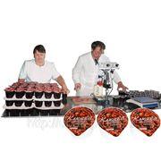 Отовое производство «ЯГОДА» - комплексное решение вопроса переработки ягоды. фото
