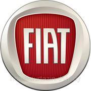 Компьютерная диагностика ФИАТ FIAT в Гомеле выезд к клиенту фото