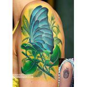 Татуировка Бабочка (2 сеанса) фото