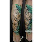 Татуировка Снежный Барс(3 сеанса) фото