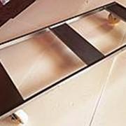 Выводная тележка Chick Master /импортозамещение/ фото