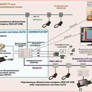 Диспетчерская система ALFA фото