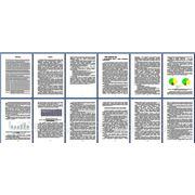 Бухгалтерский учет, анализ и аудит поступления и выбытия зерна: современное состояние и направления развития фото