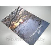 Календарь/плакат в Бресте фото