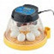 Инкубатор Mini II Advance 7 автоматический NEW фото