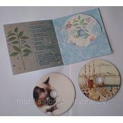 Картонный конверт для диска фото