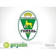 Редизайн логотипа (Обновление герба ФК) фото