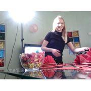 """Ролик """"Семейный праздник"""" (СКБЗ """"Альбертин"""") фото"""