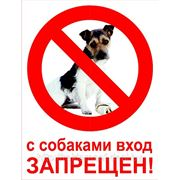 Табличка «C собаками вход запрещен» фото