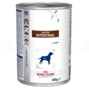 Лечебная консерва для собак Royal Canin Gastro Intestinal 0,2 кг фото