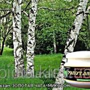 Золотая чага (микотон) крем-бальзам 50мл фото