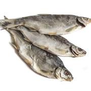Рыбец вяленый фото
