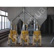 Комплектный универсальный крупоцех производительностью 30 т/сут, 60 т/сут фото