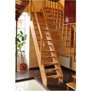 Лестница ЦЛ-7 фото