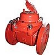 WPH-I, 150°C, DN 100, Qn 60, L 250 mm, с имп. (100L/Imp.) фото