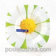 Тарелка Luminarc CARINE PAQUERETTE GREEN G0090 тарелка десертная 19.7 см фото