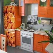 Snaige в Молдове, Холодильники с рисунком в Молдове фото