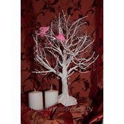 Дерево пожеланий для свадьбы Волковыск Гродно фото