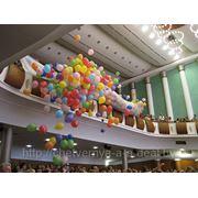 Выброс воздушных шариков из сетки фото