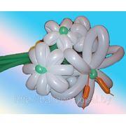 Шары ШДМ. Фигуры из шаров. Подарки зи шаров! фото