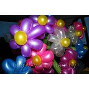 Цветы из воздушный шаров фото