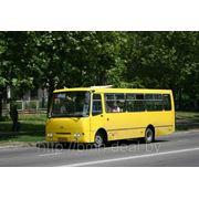 Заказ автобуса для выезда на пикники фото