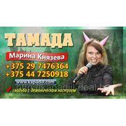 Тамада Князева Марина фото