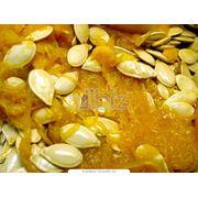 Семена тыквы фасованные фото