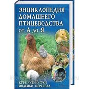 Энциклопедия домашнего птицеводства от А до Я фото