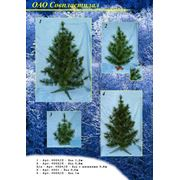 товары новогодние и рождественские фото
